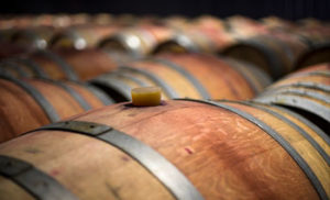 Tips for wine tasting tours in Napa