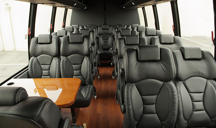 Mini Luxury Coach